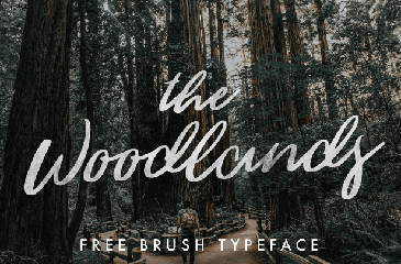 The Woodlands  Calligraphy Font
