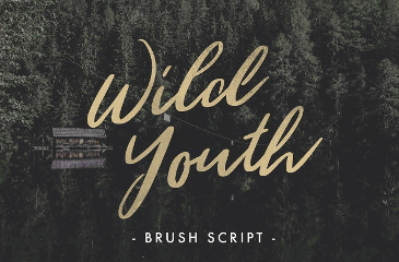 Wild Youth is hand drawn script font